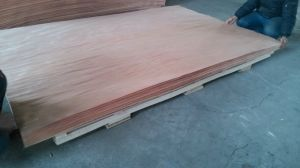 6′x9′ Rotary Cut Okoume Veneer for Plywood Making pictures & photos