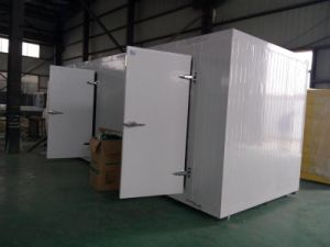 Fruit and Vegetable Cooler Type Cold Storage Room pictures & photos