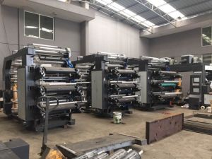 Ruipai Small Flexographic Printing Machine pictures & photos