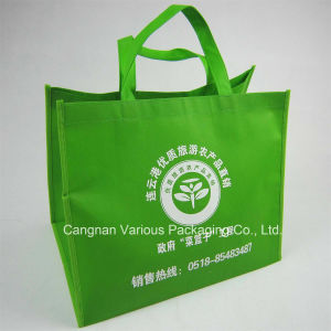 Non Woven Recycled Bag, Promotion Bag pictures & photos