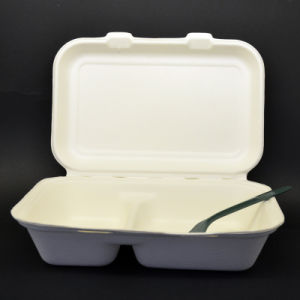 Fast Food Container with Lid pictures & photos