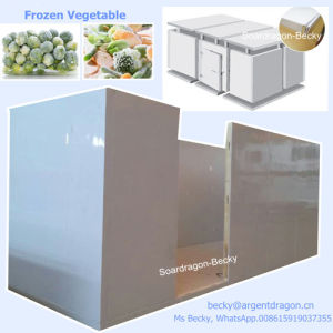 High Quality Polyurethane Cold Room for Frozen Vegetable pictures & photos