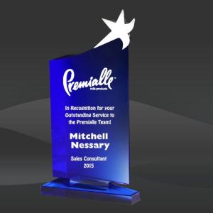 Crystal Blue Star Topper Award (DMC-DCS365, DMC-DCS366, DMC-DCS367) pictures & photos