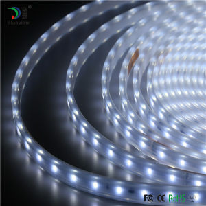 Waterproof IP67 Decoration LED Flexible Strip