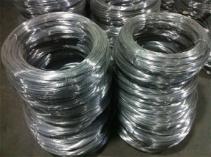 Stainless Steel Wire with High Quality Made in Chinese Professional Factory pictures & photos