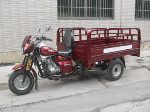 Heavy Load 250cc Reverse Motor Cargo Tricycle pictures & photos
