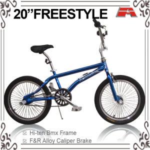 Chrome Paint Color U-Brake Freestyle BMX Bike (ABS-2020S) pictures & photos