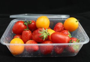 Disposable Plastic Take Away Fast Food Container with Lid pictures & photos