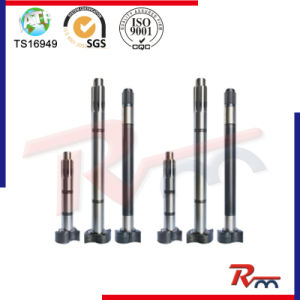 European Series S-Camshaft for Truck Trailer and Heavy Duty pictures & photos