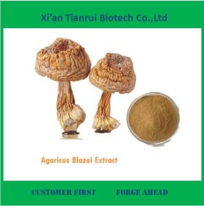 Best Selling Agaricus Blazei Extract Polysaccharide pictures & photos