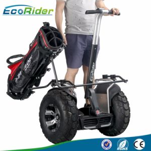 Off Road Scooter for Sale Electric Standing Chariot E-Scooter pictures & photos
