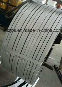 Prepainted Galvanized Steel Strip in Coil pictures & photos