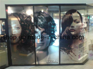 Outdoor Material Window Film One Way Vision (140mic film 150g release paper) pictures & photos