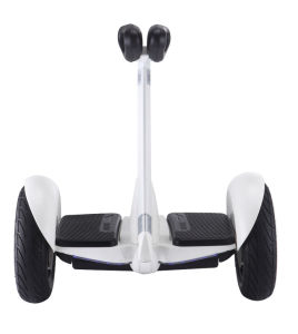 Ninebot Self-Balancing Electric Scooter with 700W pictures & photos