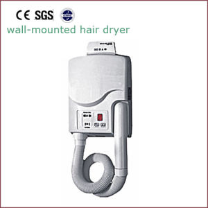 Body Dryer Skin Dryer Hair Dryer Hair Drier Hsd-9010 pictures & photos