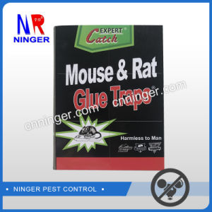 Top Sale Sticky Rat and Mouse Glue Traps Paper Board pictures & photos