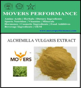 Hot Slaes Cosmetic Ingredient: Alchemilla Vulgaris Extract pictures & photos
