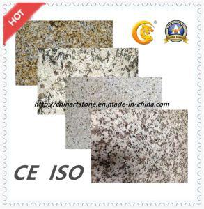 Polished, Flamed, Bushhammered, Honed Granite Marble Stone Tile for Floor pictures & photos