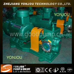 YCB Specialty Pump with Heating Jacket pictures & photos
