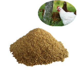 Choline Chloride 60%/70% Corn COB Cc Corn COB Feed Grade pictures & photos
