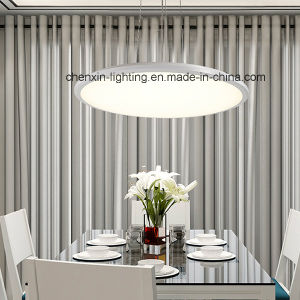 Modern Large Decorated Round Hanging Lamp/Ceiling Light pictures & photos
