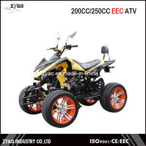 200cc EEC Approved Hot Selling ATV, 250cc Quad ATV with EEC Approved Water Cooled pictures & photos