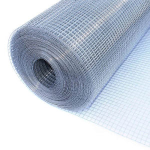 China Factory Price Mesh 25X25mm Galvanized Welded Mesh pictures & photos