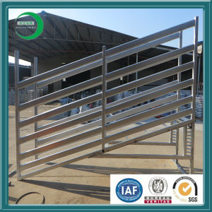 Galvanized Coating Livestock Panel for Cattle pictures & photos