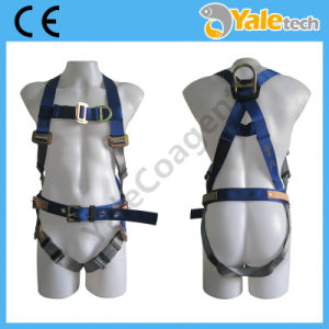 En361 Personal Protective Equipment Body Harness Yl-S317 pictures & photos