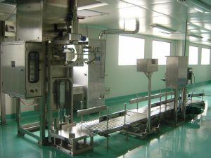 Powder/Granule Packing Machine (Gas Valve Port Packing Line)