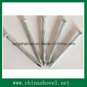 Galvanized Concrete Nails pictures & photos