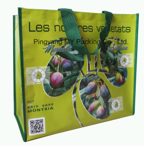 Heavy Duty Foldable BOPP Lamination PP Woven Promotional Shopping Bag pictures & photos