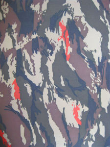 Fy-31 600d Oxford Camouflage Printing Polyester Fabric pictures & photos