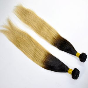 Top Quality Straight Ombre Human Hair Weft pictures & photos