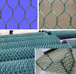 PVC Coated Chicken Wire Mesh and Gabion Basket From China Manufacturer Anping Yaqi pictures & photos