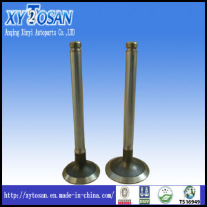 Engine Valve for Perkins 4.248/ T4.4/ 4.236/ 6.372 (ALL MODELS) pictures & photos