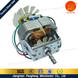 Manufacturer of Household Appliance Motors pictures & photos
