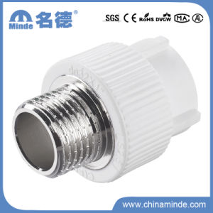 PPR Male Adapter Type E Fitting for Building Materials pictures & photos