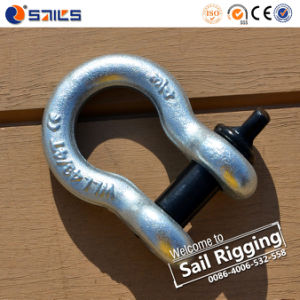 Steel Galvanized Lifting Shackles pictures & photos