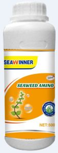 China Organic Seaweed Amino Liquid pictures & photos