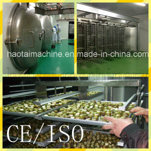 Food Vacuum Freeze Dryer pictures & photos