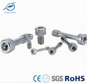Customized Atuo Parts Electrical Captive Screw pictures & photos