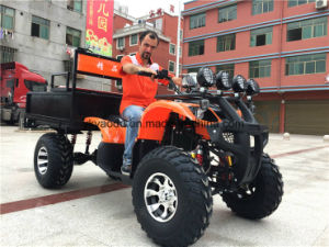 Electric Hunting Buggy, Golf Buggy, off Road Buggy, ATV pictures & photos