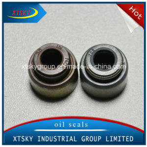 Xtsky High Quality Valve Stem Seal (13007-53F00) pictures & photos