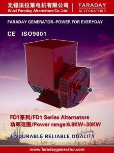 Faraday AC Generator Brushless Alternator 8.1kVA/6.5kw pictures & photos