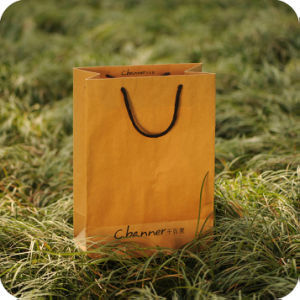 Kraft Paper Packaging Bag with Cotton Rope Handle pictures & photos