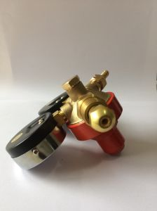 Manufacturer Directly Sale Brass Oxygen Acetylene Gas Regulator pictures & photos