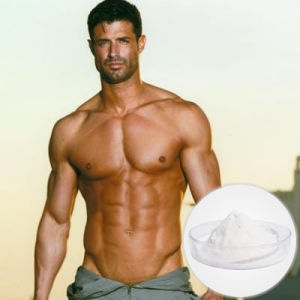 Top Quality Sarms Powder Yk11 Without Side Effects 431579-34-9 pictures & photos