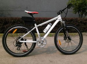 CE 36V Light Electric Bicycle (AFT-EB-141)