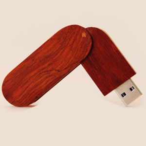 Eco USB Flash Drive Creative Gift 1GB-64GB USB3.0 pictures & photos